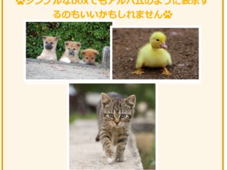 【WordPress】初心者向け1記事に装飾枠を付けるサンプル
